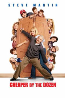 Cheaper by the Dozen The Movie