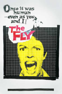 The Fly The Movie