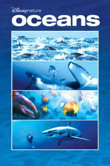Oceans The Movie