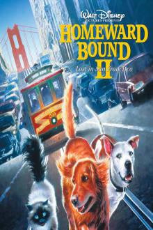 Homeward Bound II: Lost in San Francisco The Movie