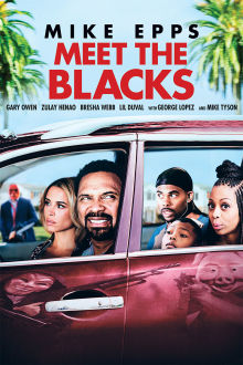 Meet The Blacks The Movie