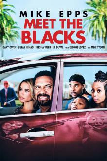 Meet The Blacks The Movie