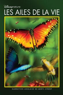 Les ailes de la vie The Movie