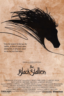 Black Stallion The Movie
