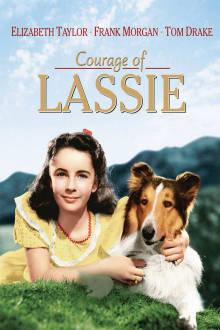 Courage of Lassie The Movie