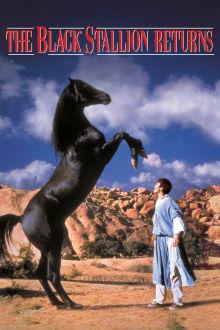 The Black Stallion Returns The Movie