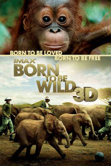 Born to be Wild The Movie
