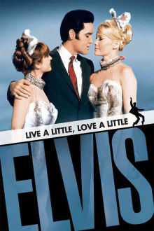 Live a Little, Love a Little The Movie