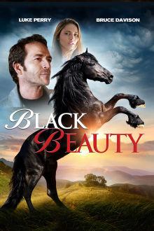 Black Beauty The Movie