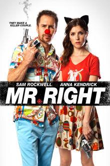 Mr. Right The Movie