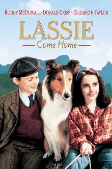 Lassie Come Home The Movie