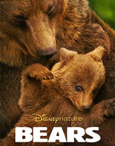 Bears Bundle SD The Movie