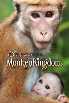 Monkey Kingdom The Movie