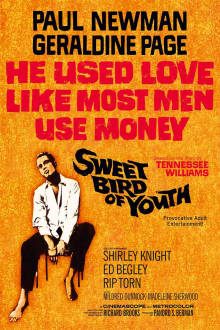 Sweet Bird of Youth The Movie