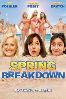 Spring Breakdown The Movie