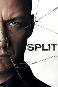 Split The Movie