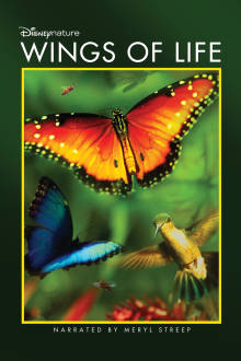 DisneyNature: Wings of Life The Movie