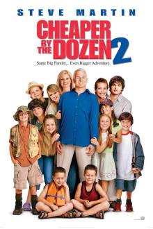 Cheaper by the Dozen 2 The Movie