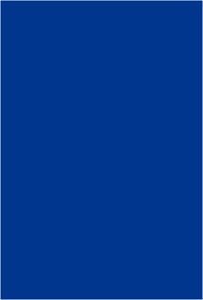 Charley-One-Eye The Movie