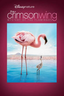 The Crimson Wing: Mystery of the Flamingos The Movie