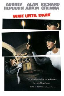 Wait Until Dark The Movie
