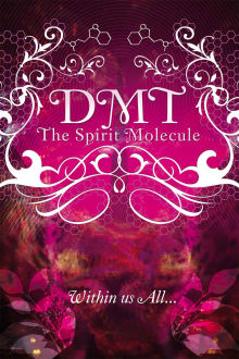 DMT: The Spirit Molecule The Movie