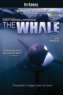 The Whale The Movie