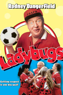 Ladybugs The Movie