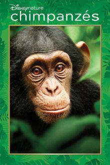 Chimpanzés The Movie