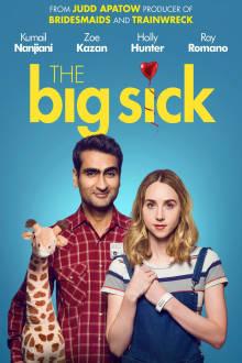 The Big Sick The Movie