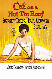 Cat on a Hot Tin Roof The Movie
