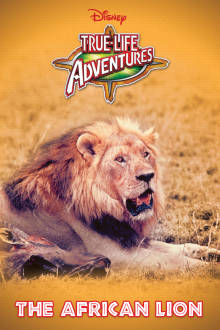 The African Lion The Movie