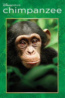 Chimpanzee The Movie