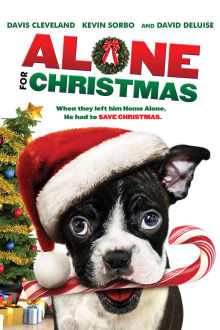 Alone For Christmas The Movie