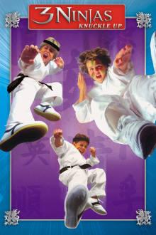 3 Ninjas Knuckle Up The Movie