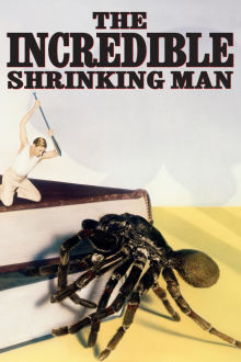 Incredible Shrinking Man The Movie
