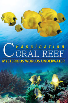 Fascination Coral Reef: Mysterious Worlds Underwater The Movie