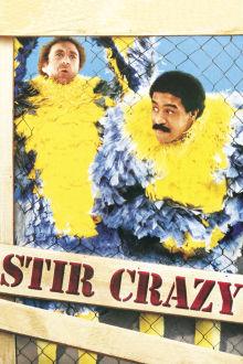 Stir Crazy The Movie