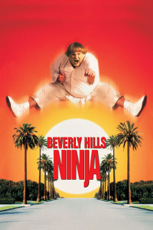 Beverly Hills Ninja The Movie