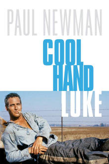 Cool Hand Luke The Movie
