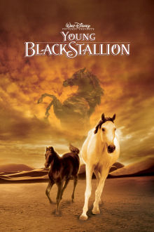 The Young Black Stallion The Movie
