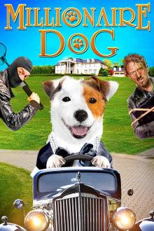 Millionaire Dog The Movie