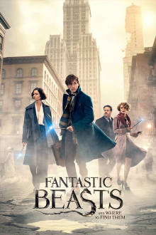 Fantastic Beasts and Where to Find Them SuperTicket The Movie