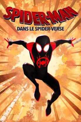 Spider-Man: Dans le spider-verse (Version française)