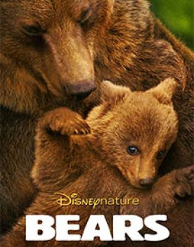 Bears: A Guide To Living With Bears