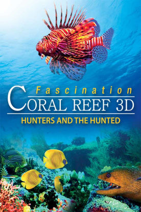 Fascination Coral Reef: Hunters & the Hunted