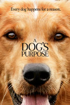 A Dogs Purpose SuperTicket, click for more info